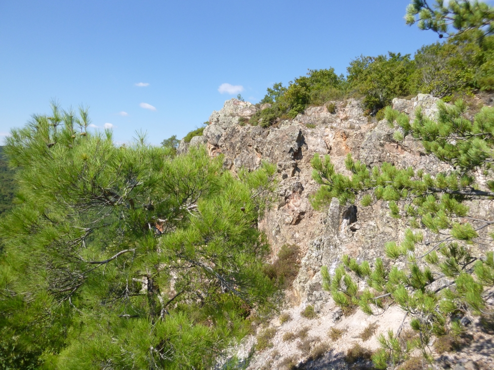 Silica cap outcrop at the Alankoy project